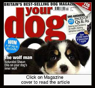 UK Dog Magazine
